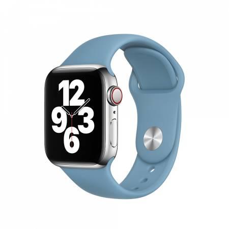 Apple Watch 40mm Band: Northern Blue Sport Band - Regular (Seasonal Nov2020)