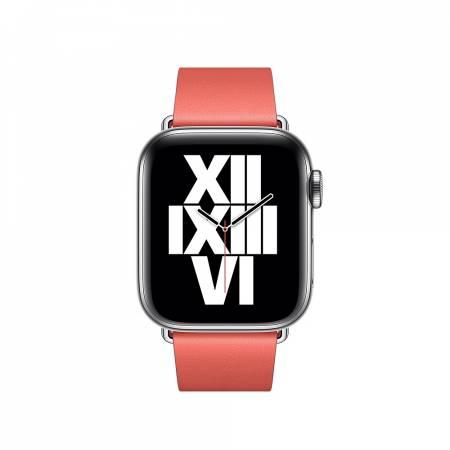 Apple Watch 40mm Band: Pink Citrus Modern Buckle - Large (Seasonal Fall 2020)