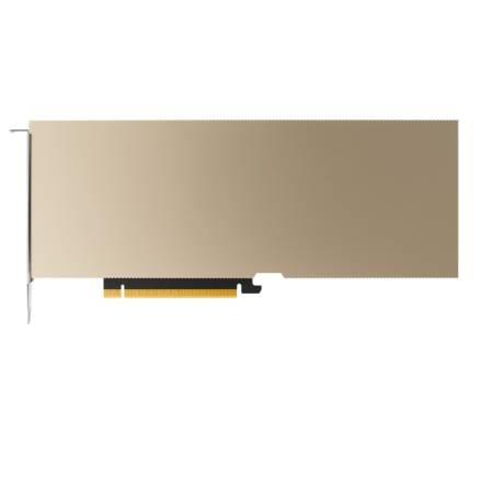 PNY NVIDIA A10 Module 24GB