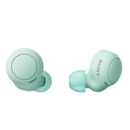 Sony Headset WF-C500